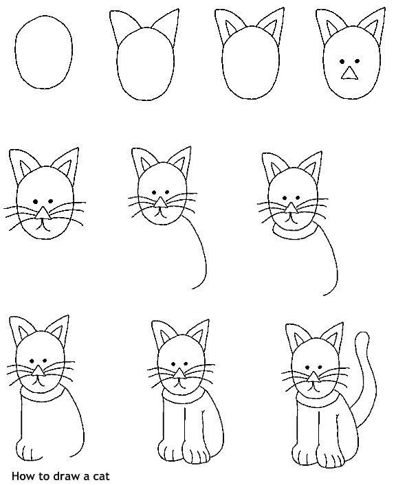 איך לצייר חתול