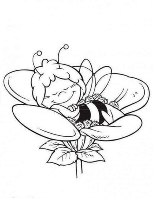 דבורה מיה בפרח לצביעה