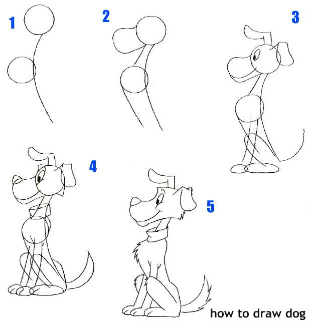 לצייר כלב בשלבים