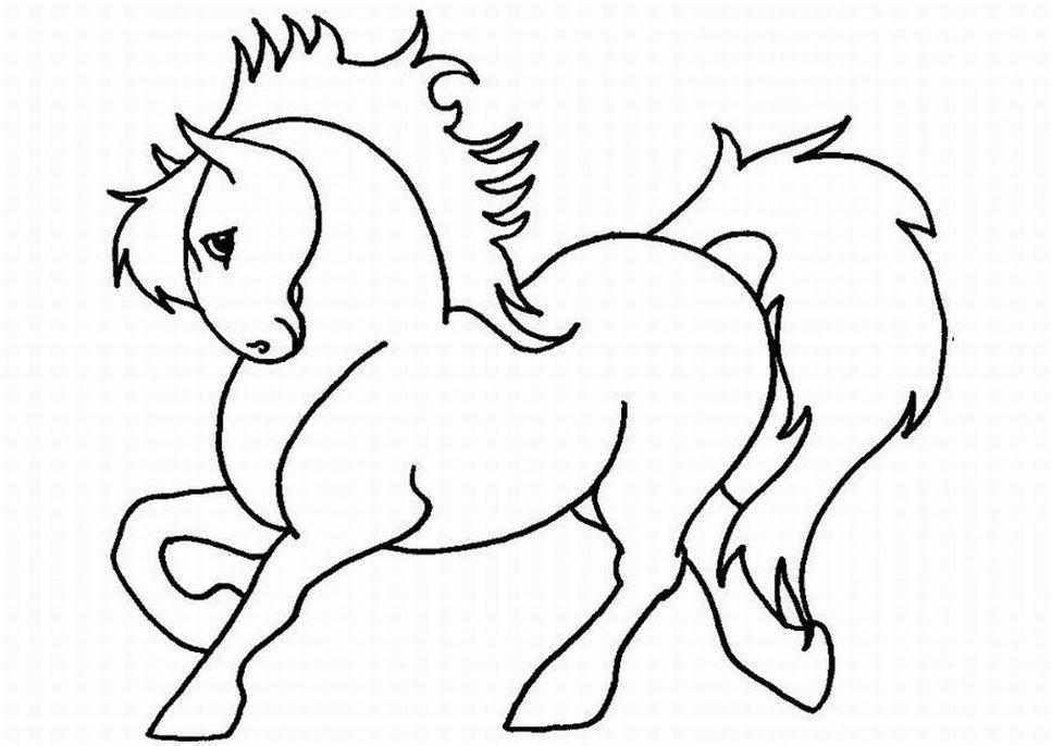 סוס אצילי לצביעה