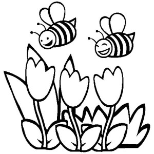 שתי דבורים לצביעה
